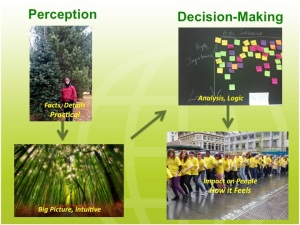 Zig-Zag Decision Making, Perception & Judgement Jung